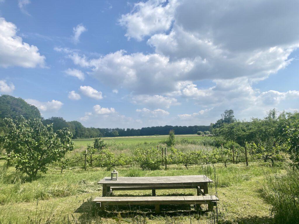 De Kleine Wildenberg - picknicken in de boomgaard - diepenveen deventer logeren bij de boer
