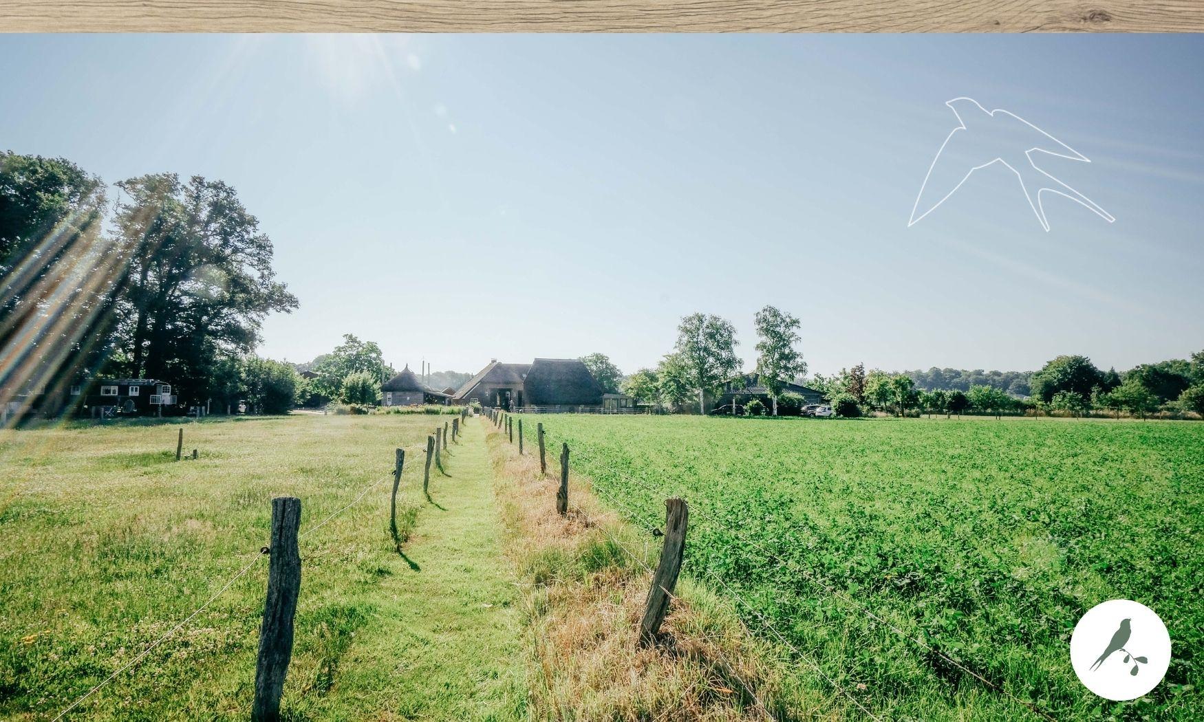 de kleine wildenberg -agritoerismo - agritoerisme - boerderijvakantie